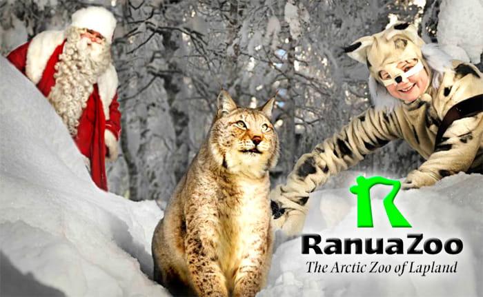 новый год в лапландии зоопарк рануа